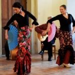 Benefiční koncert učitelů ZUŠ 14.4.2016